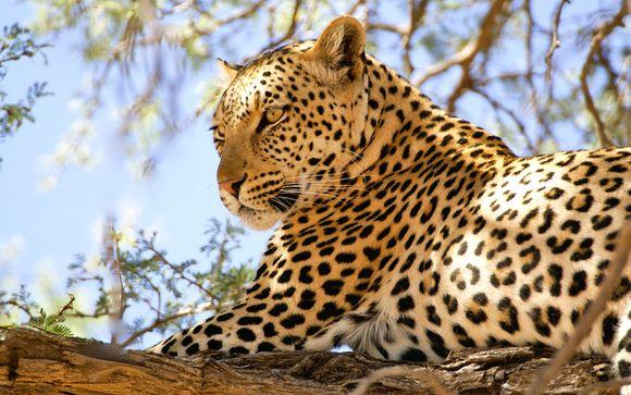 Simba Safari & White Paradise Resort Zanzibar 4*