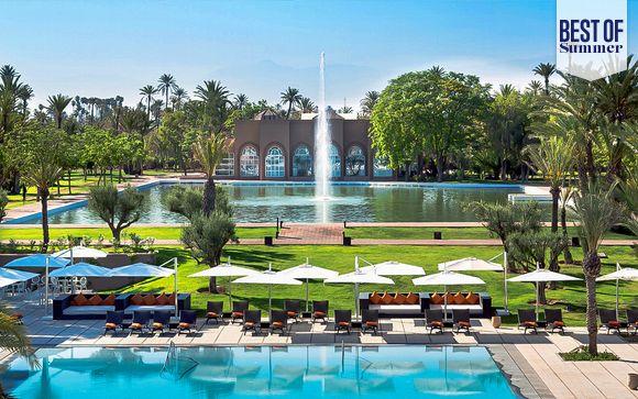 Luxury in a Lush Palm Grove