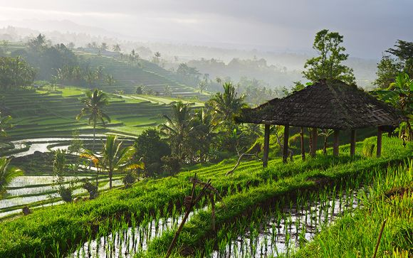 Optional Pre-Extension in Ubud