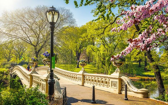 True Big Apple Experience By Central Park