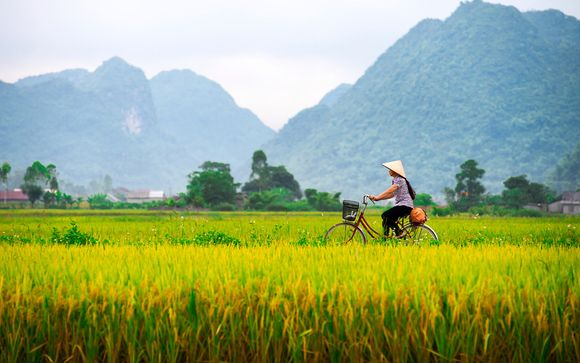 Wonders of Indochina Private Tour 4*