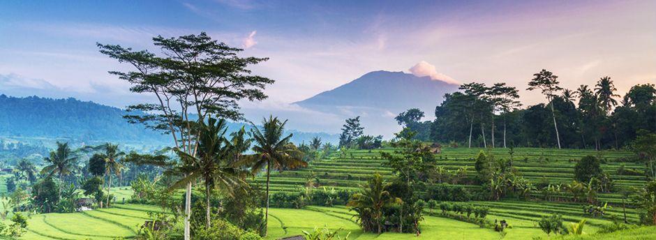 Ofertas de último minuto a Indonesia