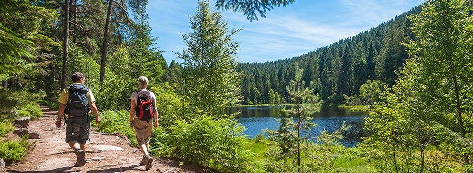 Partez en Allemagne pour un séjour inoubliable en Forêt-Noire