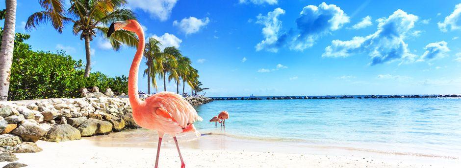 Vacanze ad Aruba