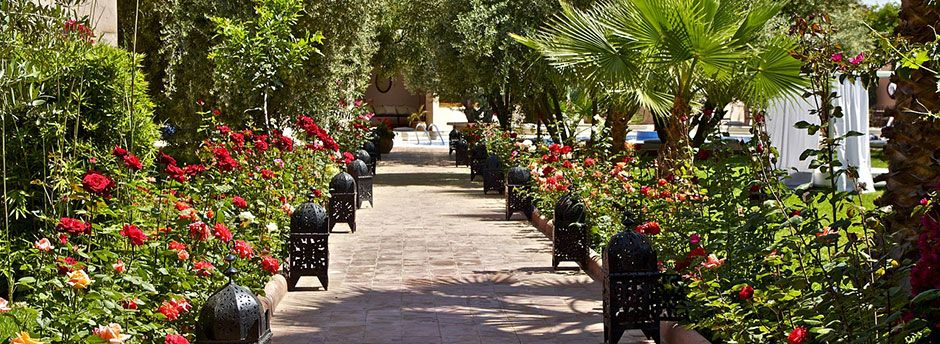 Sun holidays in Morocco